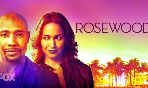Rosewood: Una serie poliziesca per FOX