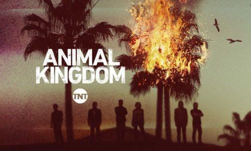 In esclusiva Animal Kingdom 2.0 su InfinityTV
